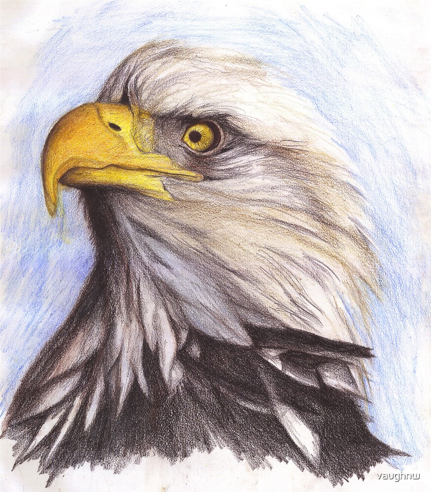 EAGLE by vaughnw