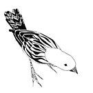 Bird by Aleksandra Kabakova