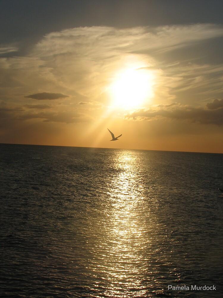 Bird in the Sunset by Pamela Murdock