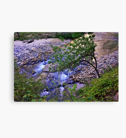 River Glow Canvas Print
