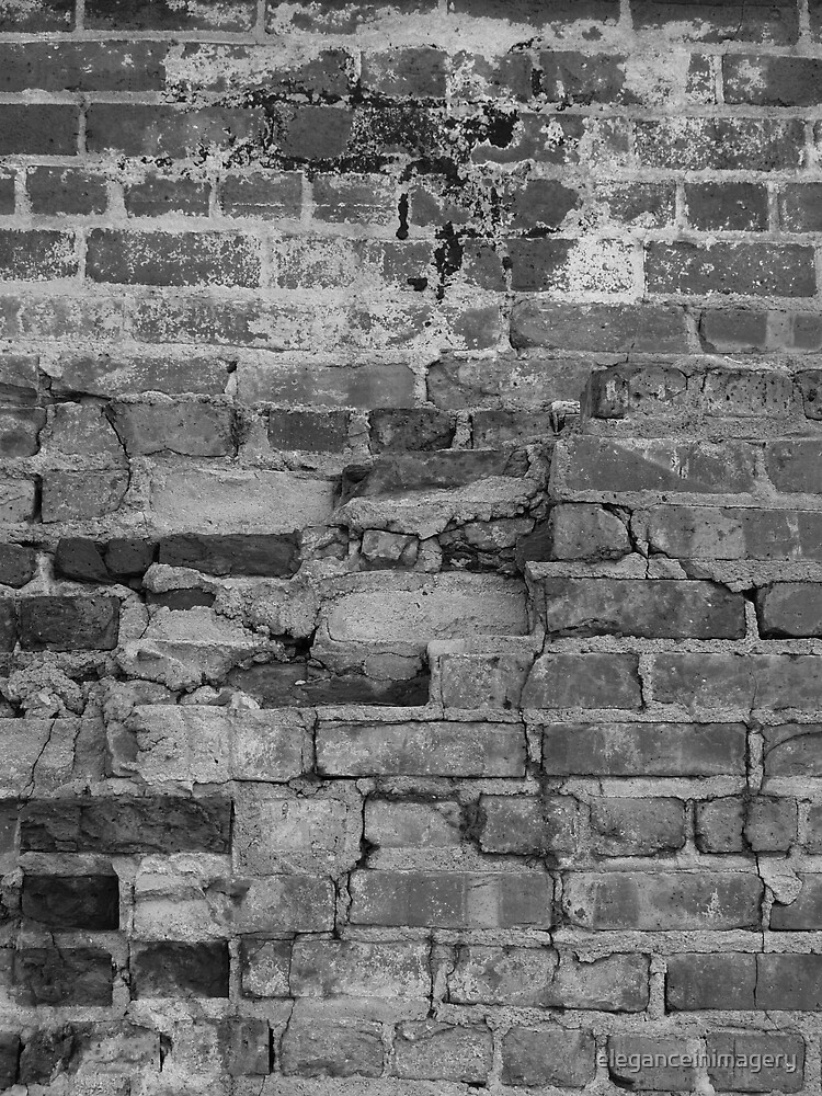 Brick Wall by eleganceinimagery