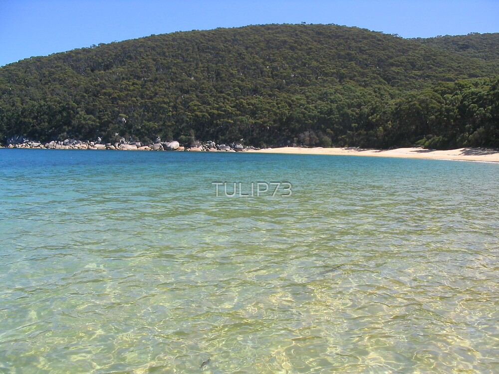 WILSONS PROMONTORY by TULIP73