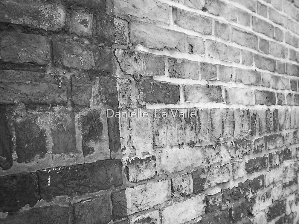 Bricks by Danielle  La Valle