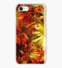 Pelee Mums two colors iPhone Case/Skin