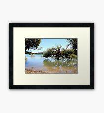 Swamp Thing Framed Print