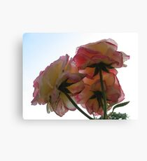Insect view Canvas Print