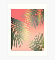 Shining Palm Fronds Art Print