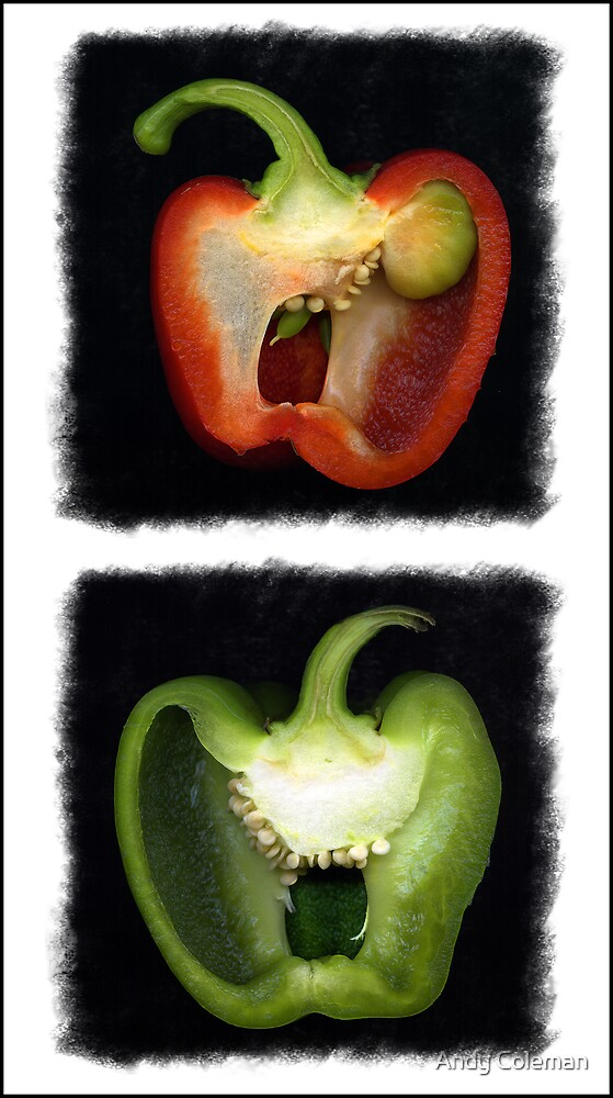 Peppers by Andy Coleman