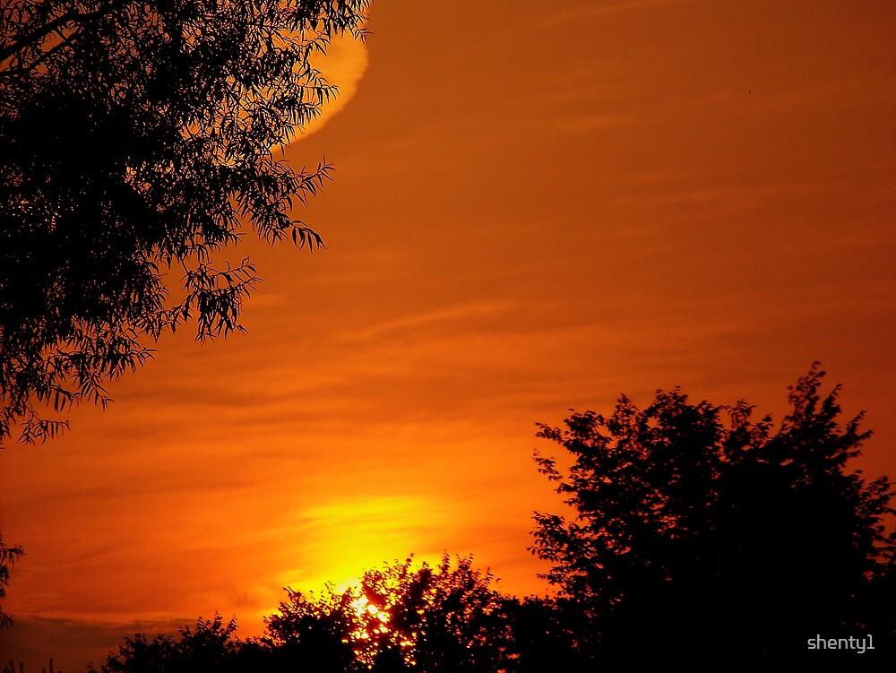 Red Sky 2 by shenty1