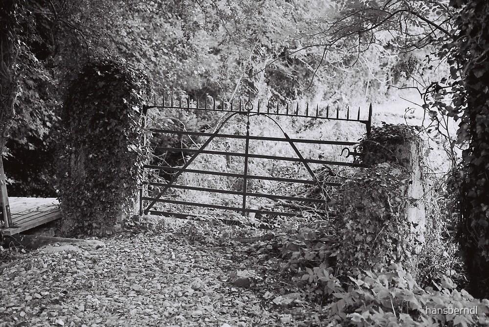 The Iron Gate by hansberndl