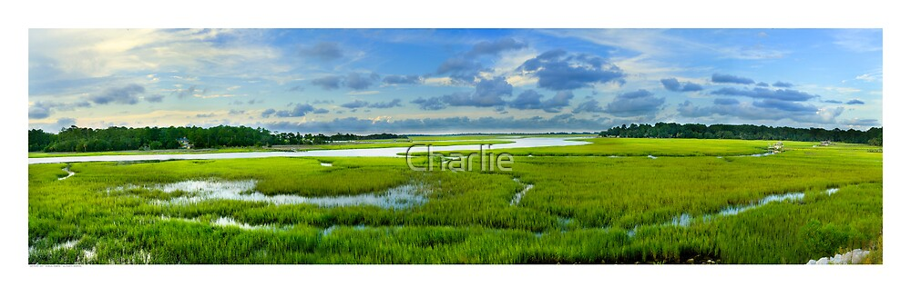 Turner's Creek at Mid Tide by Charlie