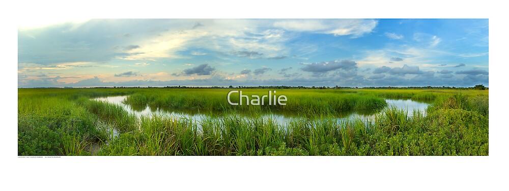 Marsh Creek Shrimping Hole by Charlie