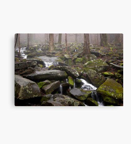 Foggy Mountain Creek Canvas Print
