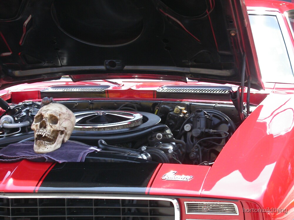 a mustag car with a skull, by hortonwildthing