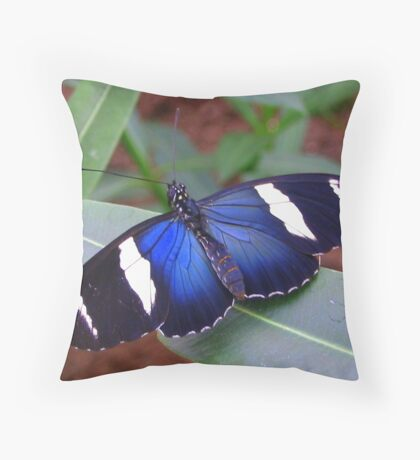 Butterfly Song Throw Pillow