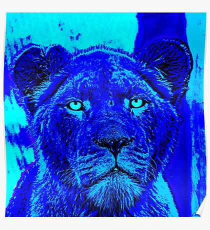 Blue Lioness Poster