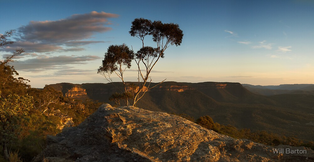 Megalong at Dusk by Will Barton