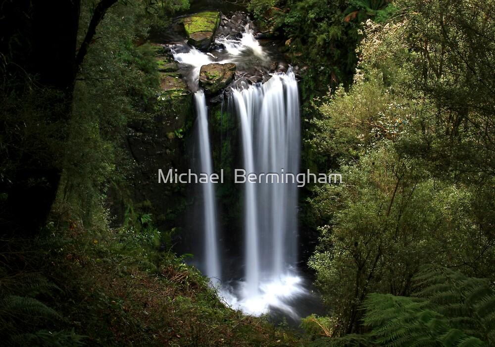 Hopetoun Falls by Michael  Bermingham