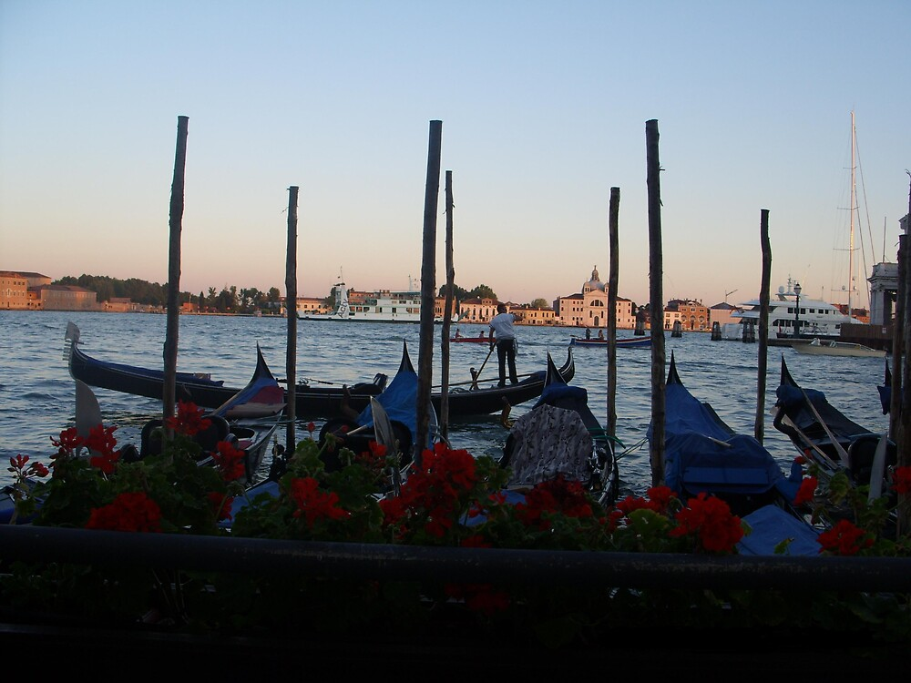 Venice by lindadominey