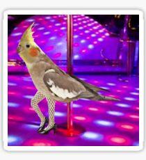 Cockatiel Stripper Sticker