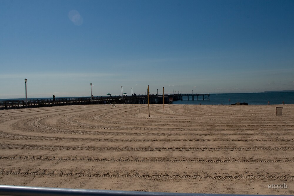 tracks on beach by etccdb