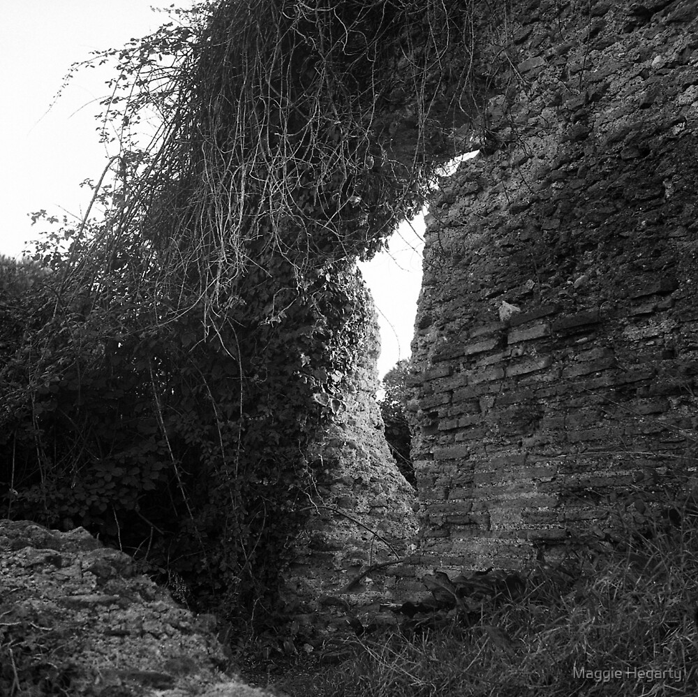 Roman wall by Maggie Hegarty