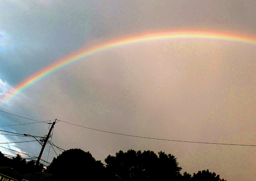Rainbow by Tommy Seibold