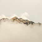 Fog in the Mountains by Sue Smith