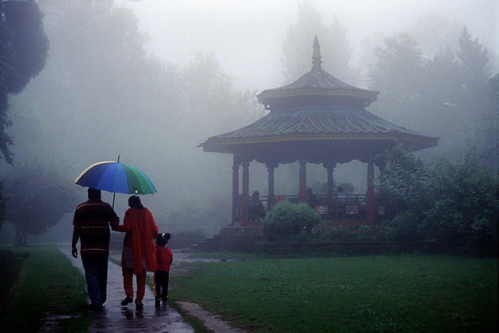 Walk in the Rain by Bubul