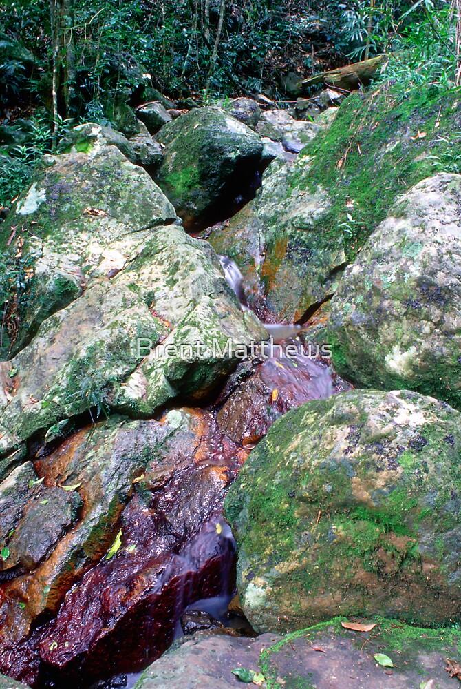 Red Rock Stream by Brent Matthews