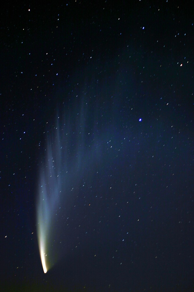 Comet McNaught 2007 by Lindsay Knowles
