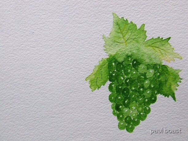 Grapes by paul boast