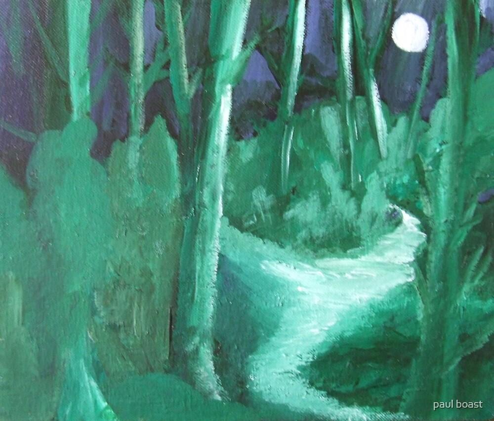 Moonlight Forest by paul boast