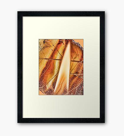 Risen from Ashes Framed Print