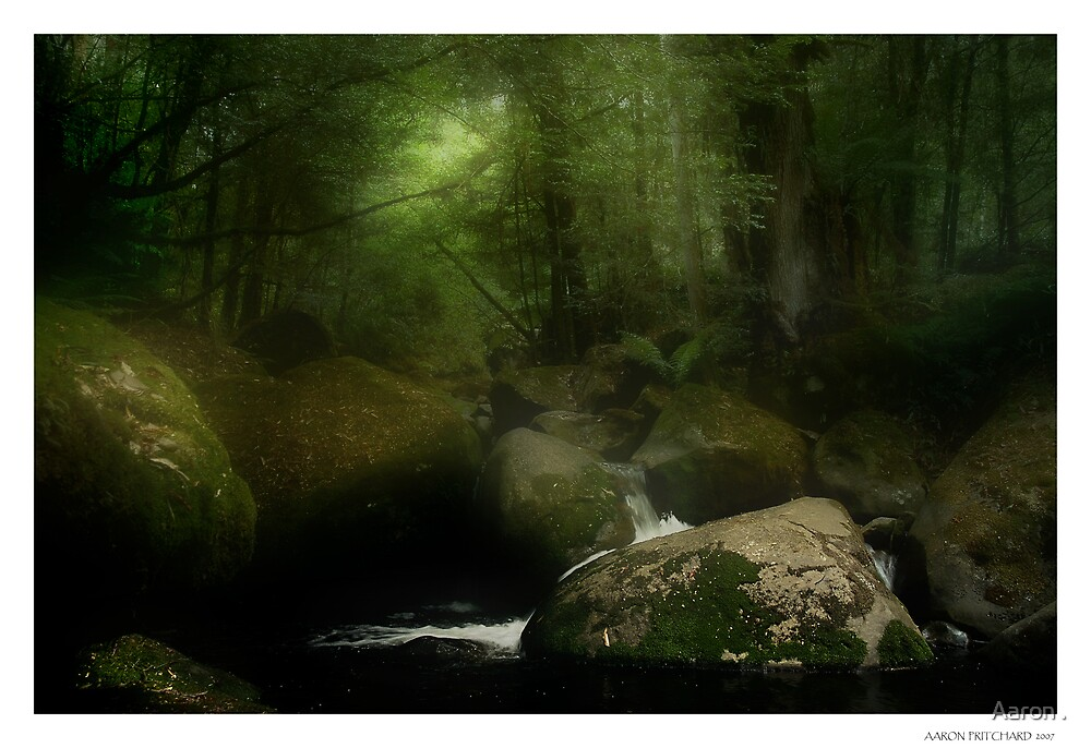 Taggerty River III by Aaron .
