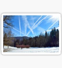 Winter scene in the forest at the mountains with cloudy sky Sticker