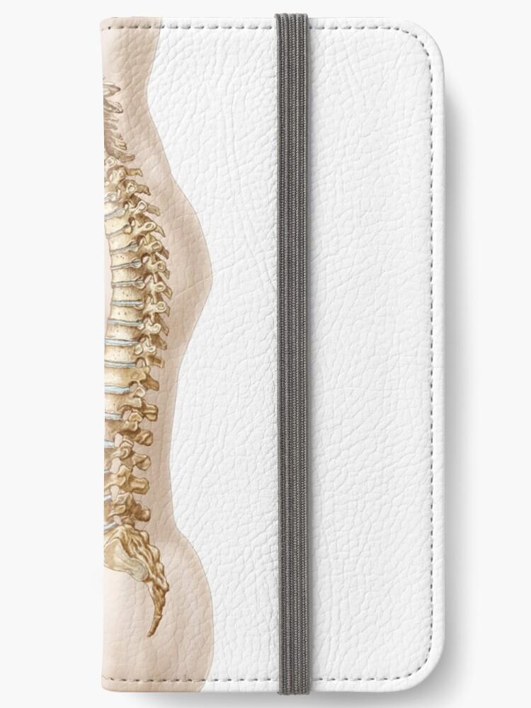 Fundas tarjetero para iPhone «Anatomía de la columna vertebral ...