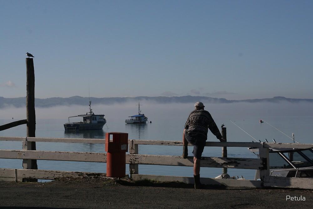 Misty morning by Petula