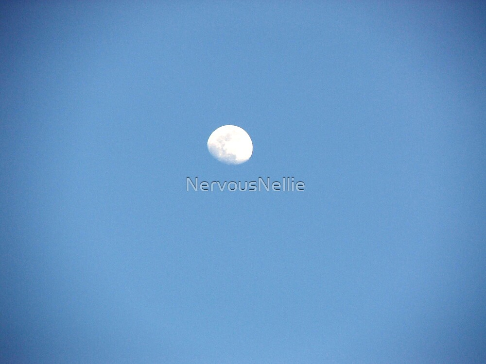 Moon in a Blue Sky by NervousNellie
