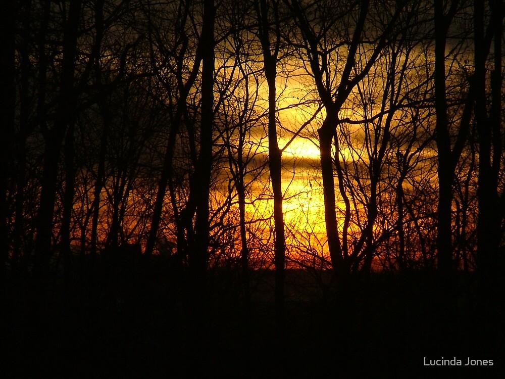 Sunrise 2 by Lucinda Jones