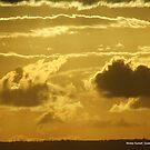Noosa Sunset, Queensland by alanlowney
