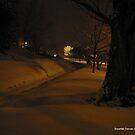 Taken in Denver, Colorado at 3am by alanlowney