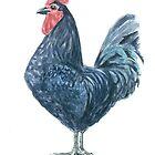Rooster by Katerina Kirilova