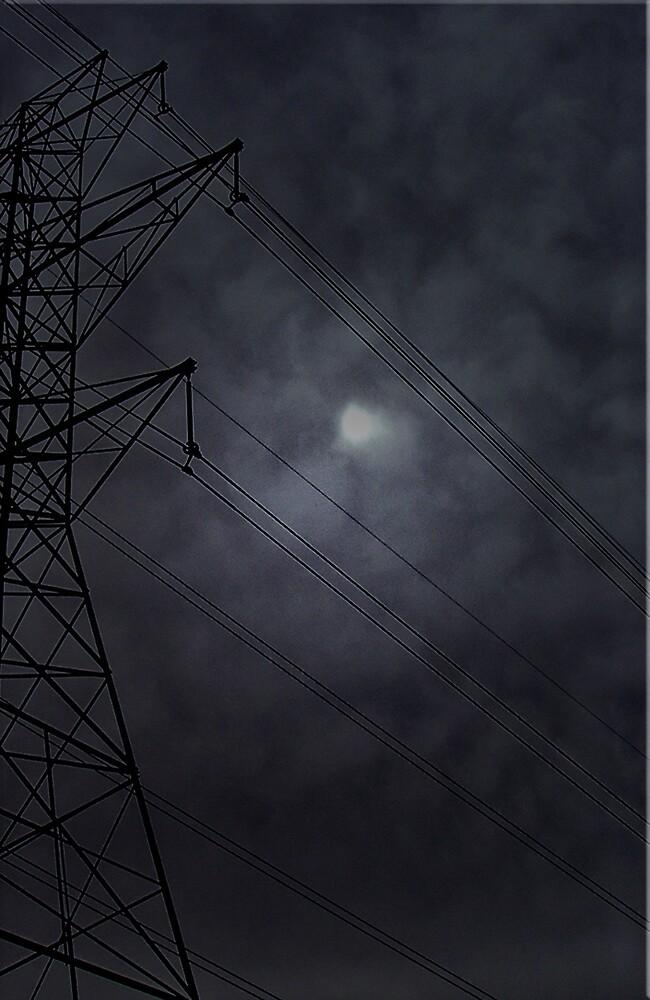 Twilight by Erika Benoit