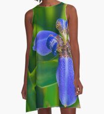 Dutch Iris A-Line Dress
