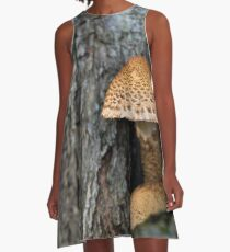 Toadstool in the rainy woods A-Line Dress