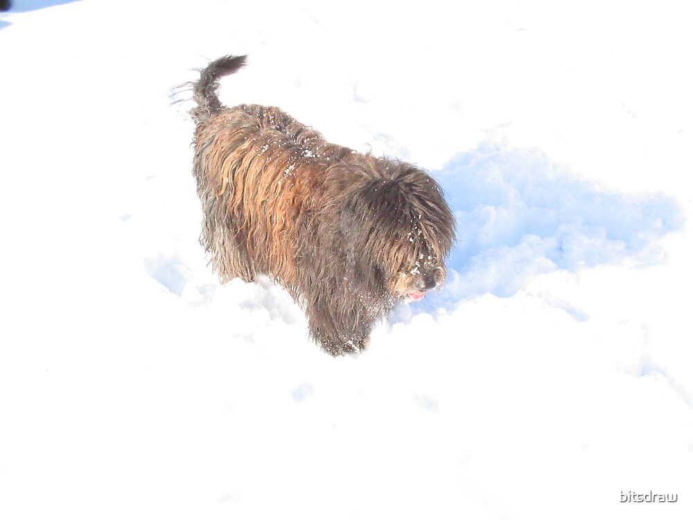 Dogs love snow by bitsdraw