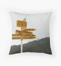 Where in The World Throw Pillow