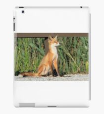 Foxing Around iPad Case/Skin