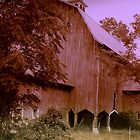 Hudson River Barn by Susan Grissom